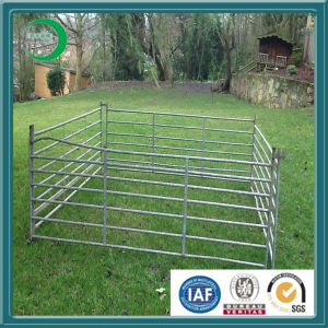 Galvanized Metal Livestock Farm Fence Panels for Horse (xy-L67) pictures & photos