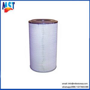 Alibabaru Air Filter 1318919 Af25237 Wga1245 pictures & photos