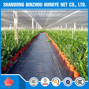 Fire Flame Blue UV Resistant HDPE Sun Shade Net for Construction Outside pictures & photos