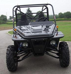 4X4 Go Kart, 1100CC Go Kart, Sand Beach Buggy pictures & photos