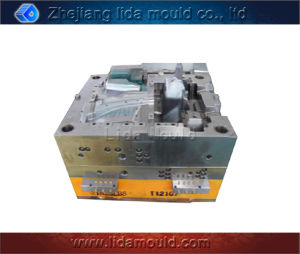 Plastic Injection Mold for Car Part (E1002D)