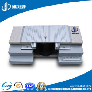 Floor Expansion Joint Covers in Building Materials (MSDGJS) pictures & photos