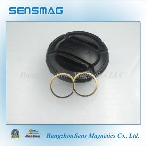 Strong Ring NdFeB Magnet Permanent Neodymium with Gold Coated pictures & photos