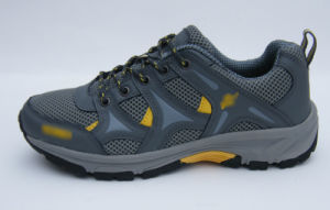 Md Outsole Running Shoes pictures & photos