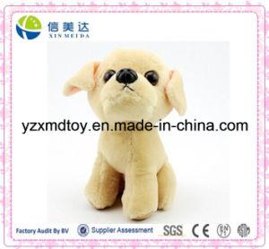 New Design Cute Labrador Dog Plush Toy pictures & photos