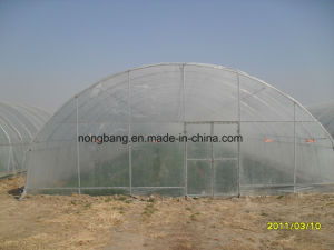 Cheap Agricluture Multi Span Glass Garden Greenhouse pictures & photos