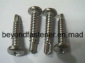 Screw DIN7504n Ss304 Roofing Screw Fasteners pictures & photos