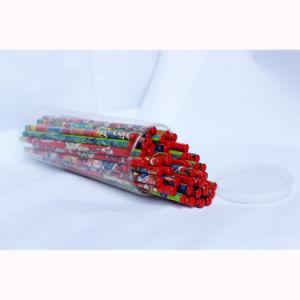 Blacklead Foil Pencils Hb with DIP End pictures & photos