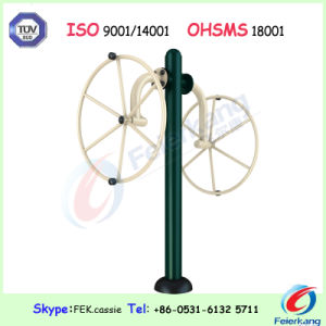 Arm Wheel Fitness Playground Gym Amusement Outdoor Park Equipment pictures & photos