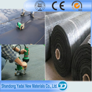 HDPE Geomembrane/ Black Plastic Sheeting pictures & photos