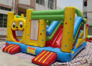 Amazing Inflatable Castle, Jumping Castle Inflatable, Hire Inflatable Bouncer, Commercial Quality Bouncy Castle pictures & photos