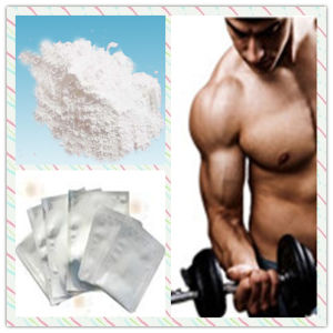 Primonabol Bodybuilding Nibal Methenolone Acetate pictures & photos