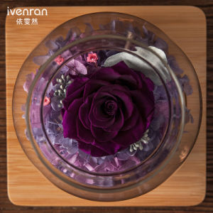 Ivenran Luminous Wish Bottle Fresh Flowers for Creative Present and Decoration pictures & photos