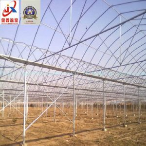 Tunnel Type Greenhouse Generally Chosen by Vegetable Growers pictures & photos