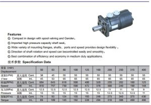 Cycloid Hydraulic Pump Motor with Low Speed High Torque Orbit Motor pictures & photos