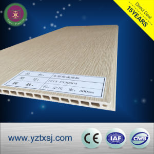 Environmental Wood Plastic Composite WPC Exterior Wall Decorative Panel pictures & photos