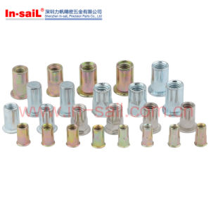 Different Types of Rivet Nut pictures & photos