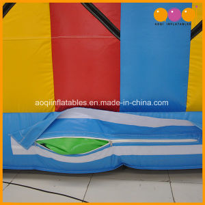 Inflatable Sports Bungee Run Game for Adults (AQ1717-11) pictures & photos