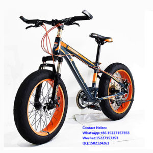 Cheap Fat Tire Bike From China (ly-a-120) pictures & photos