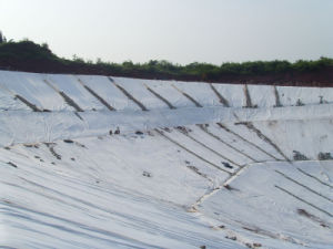 Geotextile/Non Woven Geotextile/Geotextile Fabric Price pictures & photos