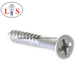 Hot Sales Carbon Steel Zinc Plated Csk Head Screws pictures & photos