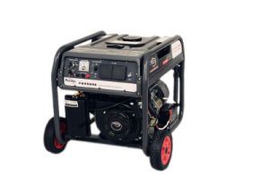 2kw Gasoline Generator with Ohv Type Engine Fd2500 pictures & photos