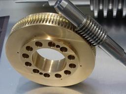 Worm Turbine for Auto Parts