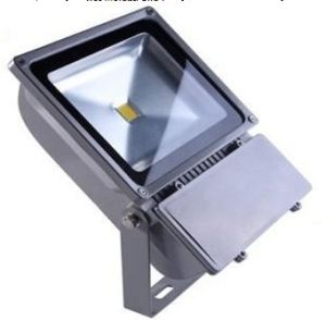 Outdoor LED Floodlight, 100W COB Flood Light, Outdoor Lighting pictures & photos