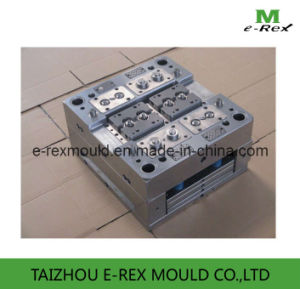 Plastic Screw Nut Mould / Fitting Mold/Molding