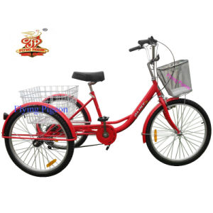"24"" Flying Pigeon Cargo Tricycle (FP-TRB-J09) pictures & photos"