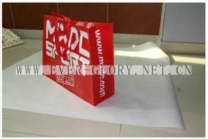 Plastic Shopping Packaging Bag