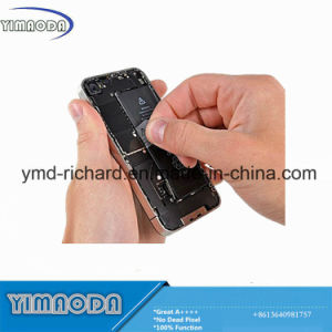 High Quality Original Cell Phone Battery for iPhone 5s pictures & photos