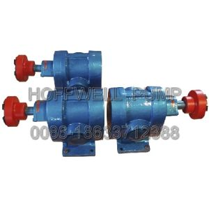 High Quality of 2CY HFO Pump pictures & photos