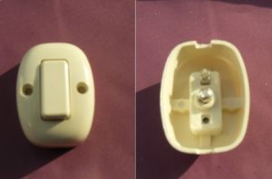 Bakelite or ABS Light Switch (HSW-09)