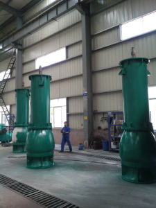 High Capacity and Low Speed Long-Axis Vertical Pump