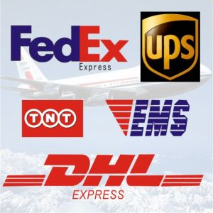 Express, Courier to Door Service