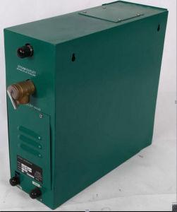 Fenlin Sauna Steam Room Electric Steam Generator Price pictures & photos