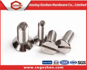 High Quality Stainless Steel Slotted Head Screw Machine Screw pictures & photos