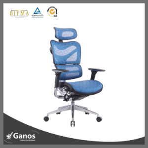 Blue Mesh BIFMA Standard Foshan Factory Good Back Support Chairs pictures & photos