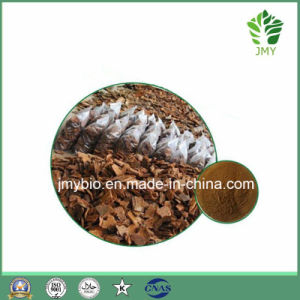 100% Natural Antioxidant Pine Bark Extract, 95% Proanthocyanidins Powder pictures & photos