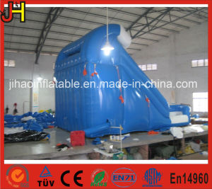 Commercial PVC Tarpaulin Double Lane Inflatable Slide/Inflatable for Sale pictures & photos