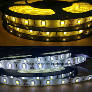White/Warm White 5630 SMD Waterproof IP65 Strip Lighting pictures & photos
