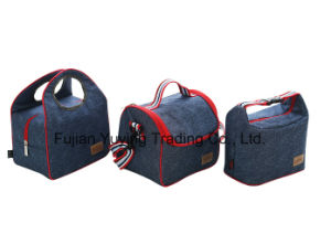 Picnic Bag Organizer Cooler Bag with Custom Printing pictures & photos