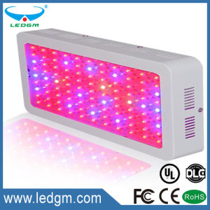 150-160W Square LED Grow Light 630nm 460nm 430nm LED Plant Lighting pictures & photos