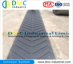 Chevron Conveyor Belts Supplier pictures & photos