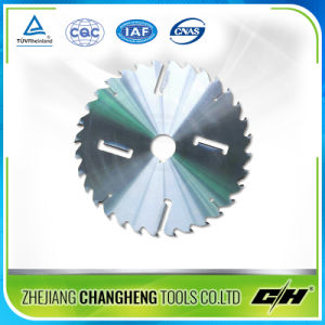 Tct Saw Blade with Rakers pictures & photos