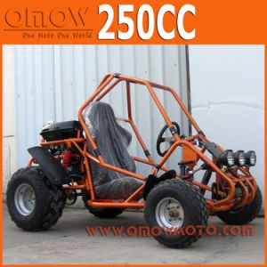 Single One Seat 250cc Automatic Cheap Gas Go Kart pictures & photos