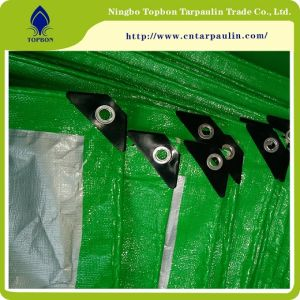 High Quality PE Tarpaulin pictures & photos