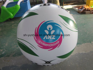 Inflatable Beachball for Promotion pictures & photos