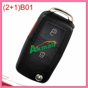 Kd Remote Key of B01- (2+1) for Kd900 pictures & photos